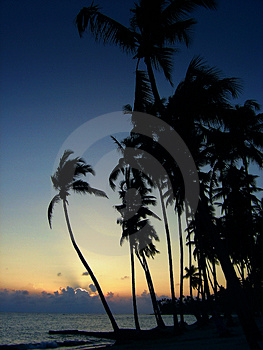 Coucher du soleil tropical Photos stock