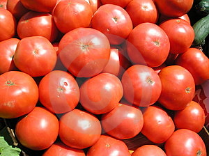 Tomatoes Closeup Stock Images