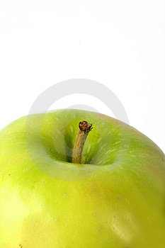 Apple In Green Close-up Free Stock Photo