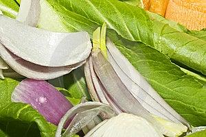 Stir-fry Vegetables Stock Image - Image: 18011611