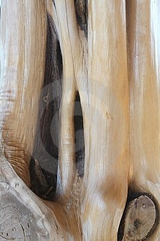 Stripped Sealed Cedar Post With A Knot Stock Photo - Image: 18012280
