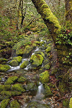 (Lower) Merlin Falls Stock Photo - Image: 18014000