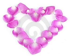 Pink Rose Petal Heart Royalty Free Stock Photos - Image: 18024478