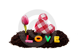 Valentine Heart And Flowers Royalty Free Stock Photo - Image: 18036075