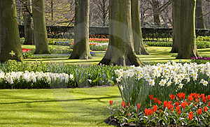 Holland Park Royalty Free Stock Photos - Image: 18054648