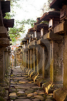 Towers Forest In Kasuga Shrine , Nara Japan Stock Images - Image: 18073714