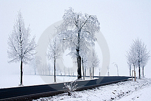 Snowy Road Royalty Free Stock Photo - Image: 18094265