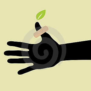 Hand With Leaf And Plaster Stock Photo - Image: 18104210