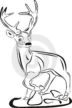Wild Deer Royalty Free Stock Photos - Image: 18119958