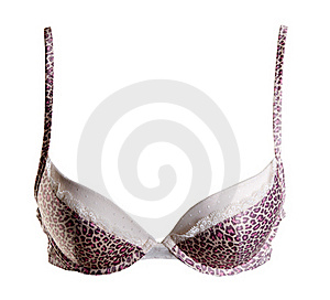 Bra With Leopard Pattern Stock Photos - Image: 18120403