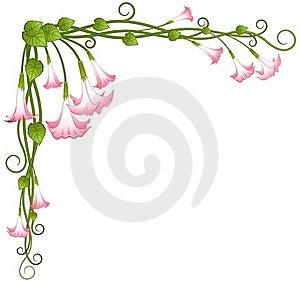 Beautiful Pink Lilies Royalty Free Stock Photos - Image: 18120938