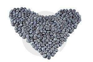 Blueberry Heart Organic Stock Images - Image: 18138834