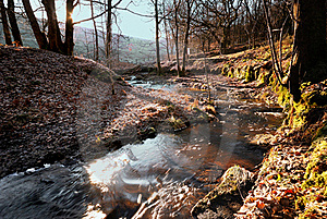 A Winter Stream Royalty Free Stock Image - Image: 18140016