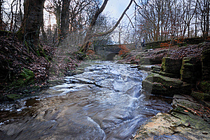 A Winter Stream Royalty Free Stock Images - Image: 18140329