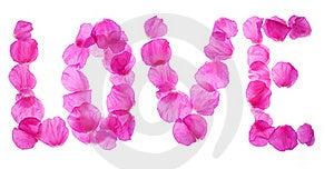 Rose Petals Love Stock Image - Image: 18152661