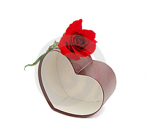Present Box And Red Rose Stock Photo - Image: 18174230