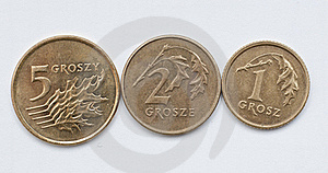 Coins Of Polish Currency Zloty Stock Photos - Image: 18194393