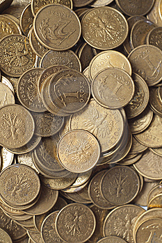 Coins Of Polish Currency Zloty Stock Images - Image: 18194554