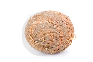 Coconut Royalty Free Stock Photography - Image: 18196737
