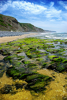 Wild Beach Stock Images - Image: 18215504