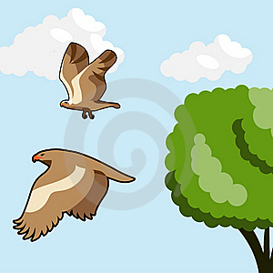 Flying Birds Royalty Free Stock Photos - Image: 18238328