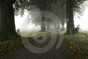 Alley In The Mist Stock Photo - Image: 18240410