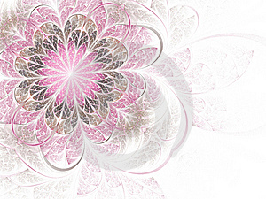 Gentle And Sweet Pink Fractal Flower Stock Images - Image: 18240984