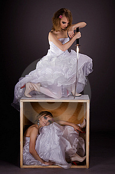 Double Portrait Of The Bride. Concept Two Characte Royalty Free Stock Photo - Image: 18250355