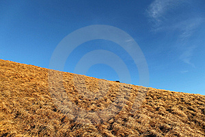 Hill In The Sky Royalty Free Stock Photos - Image: 18255428