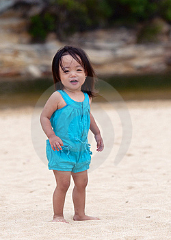 Fun At Beach Stock Images - Image: 18264334