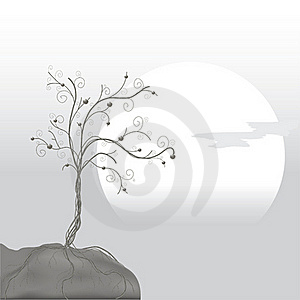 Gray Tree Stock Images - Image: 18271474