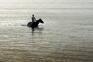 Silhouette Of Horse And Rider In Ocean. Royalty Free Stock Photo - Image: 18284945