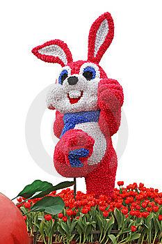 Vigorous Rabbit Flowered With Tulips Stock Image - Image: 18285151