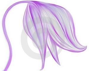 Tender Violet Flower Illustration Stock Photos - Image: 18290473