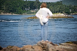 Looking At A Cove In Maine Stock Images - Image: 18290584