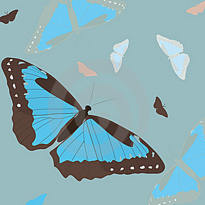 Blue Butterfly Stock Photography - Image: 18299092
