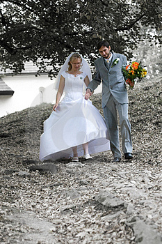 Bride And Groom Stock Images - Image: 18315514