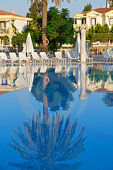 Palm Trees Reflecting Stock Images - Image: 18321744