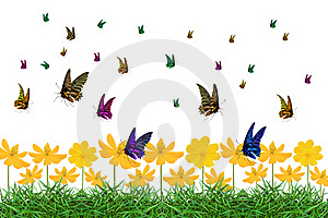 Colorful Of Butterfly Stock Photo - Image: 18324080