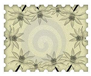 Image Lotus Flower Frame On Old Paper Royalty Free Stock Photo - Image: 18324515