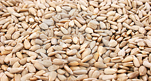 Sunflower Seeds Royalty Free Stock Photo - Image: 18341375