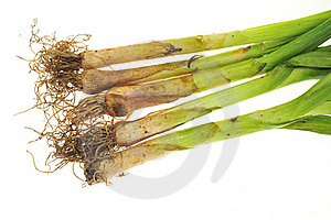 Chinese Leeks Royalty Free Stock Photos - Image: 18346158