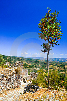 Ruins Of Old Town In Mystras, Greece Stock Photography - Image: 18376452
