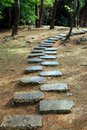 Stone path in the woods