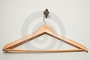 Wooden Coat Hanger Stock Photography - Image: 18400792