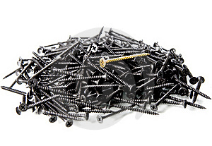One Screw Royalty Free Stock Image - Image: 18406386