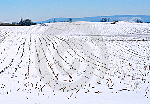 Winter Farm Royalty Free Stock Images - Image: 18411459