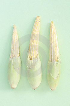 Baby Corn Stock Images - Image: 18423824