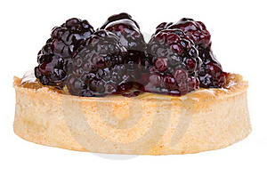 Blackberry Cupcake Stock Image - Image: 18429501