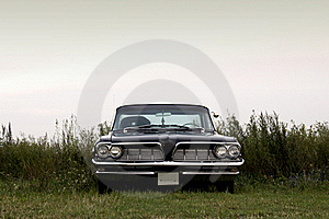 American Classic - Field Trip Stock Photo - Image: 18437890